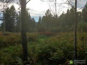 15 000$ - à partir de - Terrain résidentiel à St-Félix-D'Oti Saguenay Saguenay-Lac-Saint-Jean image 4