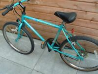 Raleigh Ascender
