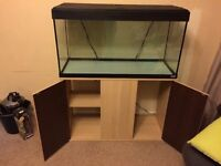 Fluval Roma 200 Fish Tank with Oak Cabinet