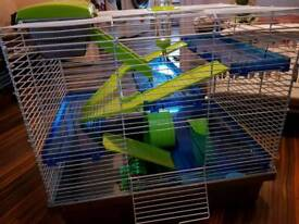 New cage for hamster