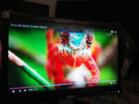 """SONY,V7,HP & DELL 17"""" TFT SCREEN,SHARP AND nice and some other brands from 15£"""