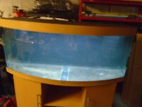 For sale Juwel 450 ltr bow fronted fish tank / aquarium with cabinet