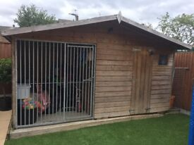 Quality Dog kennel with run & shed
