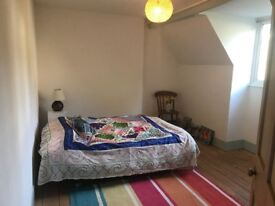 Double room to rent overlooking garden in 1860's house