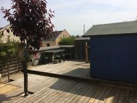 Lovely Single Room In Large Newly Renovated Professional Shared House