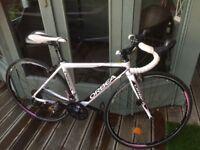 Ladies Orbea Racing Bike