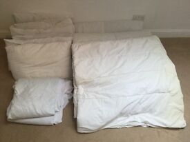 Duvet and Pillow collection