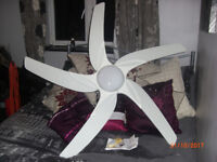 Large Remote Control Ceiling Fan/Light