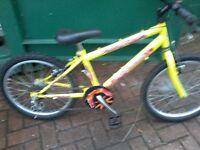 A nice boys bike for sale