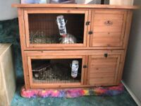 Easipet Guinea pig hutch New and built plus run bottles and plastic house