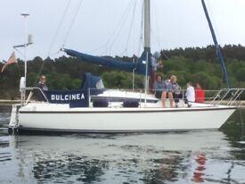 Colvic Salty Dog 26 sailing cruiser