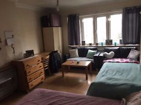 Large Spacious Room Share for 1 Person Avail in Hammersmith
