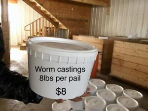 Worm castings for sale. The best organic fertilizer in the world!