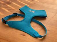 Doodlebone dog harness in Cyan, size L