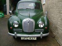 AUSTIN A40 SOMERSET 1953 classic