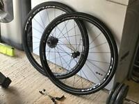Fulcrum Racing Sport DB 700c wheels, 11spd Cassette + Commuter Tyres