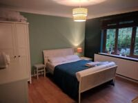 Lovely double room to rent in Family Home for single occupancy