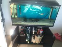 Aquael tropical fish fish tank