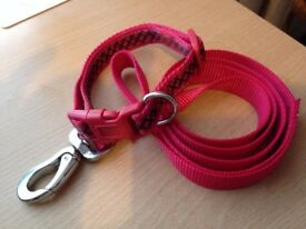 "Red Small Dog Collar & Lead Set (Collar 11"" Lead 40"")."
