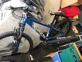 "Saracen bike 24"""