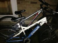 Apollo XC26 and cross bike £45 for both