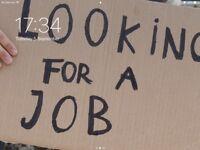 Temporary job wanted emediat start