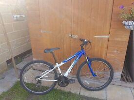 Apollo Mountain Bicycle in good condition