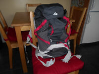 Adults 20Ltr Backpack Quechua Grey with Pink