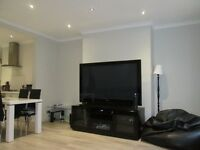 Holiday / Short Term/ central London/ A spacious 5 bedroom 2 bathroom apartment, sleeps up to 7