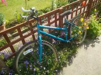 15 Gear Ladies Bicycle, Apollo Excel 3500
