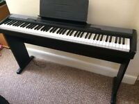 CASIO CDP-100 Digital Piano 88 note