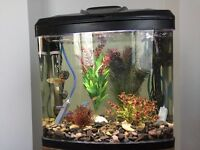 Perfect starter aquarium! Aqua One AquaVue 380