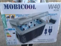 Thermoelectric Cooler for Camping / Festivals /