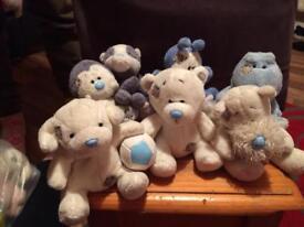 Blue nose bears