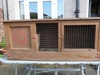 Guinea Pigs Hutch and Outdoor Run