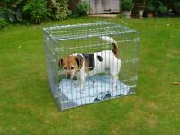 Medium sized dog cage in excellent condition, folds flat for storage