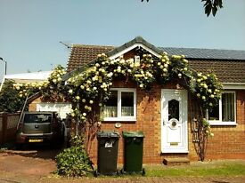 Semi Detached bungalow 2 bedrooms Doncaster Yorkshire