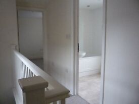 Fantastic one bedroom flat for rent