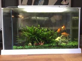 Fluval Spec 21 ltr aquarium - perfect condition fish tank