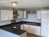 Luxury 2 Bedroom Flat Available - Gants Hill
