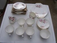 Crown Trent Staffordshire Tea set