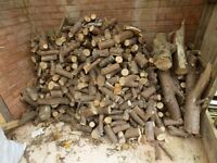 Dry Stored Firewood Logs / Kindling