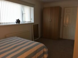 Beautiful large quiet room in refurbished house