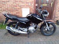 2012 Yamaha YBR 125 black, 9 months MOT, service history, very good condition, bargain, not cbf cg
