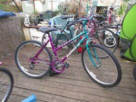 magna creation bike