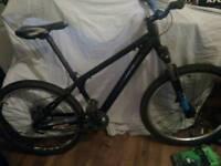 Single gear suspension bike