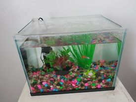 Fish, tank, filter & accesories