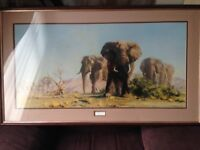 David shepherd framed elephant print