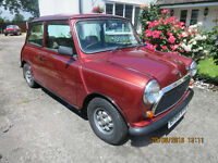"1984 AUSTIN MINI MAYFAIR 1 lady owner from new 38000 miles 4"" history file all ORIG spec"