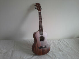 Kentucky KM1000 F5 style mandolin:Adirondack+maple/ carved top | in